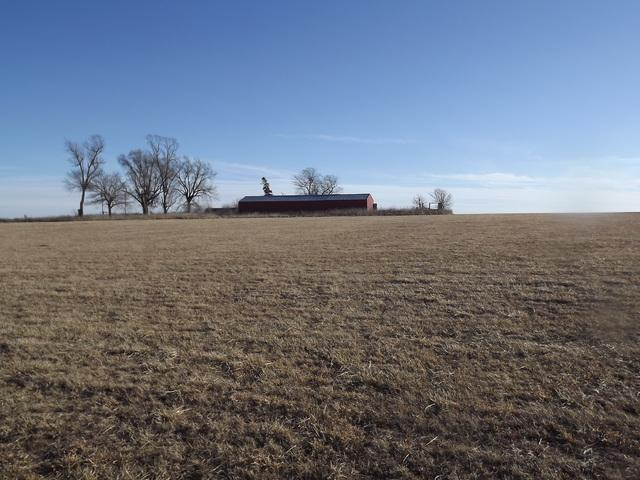 163 E 800 North Road, Buckley, IL 60918 (MLS #09902674) :: Ani Real Estate