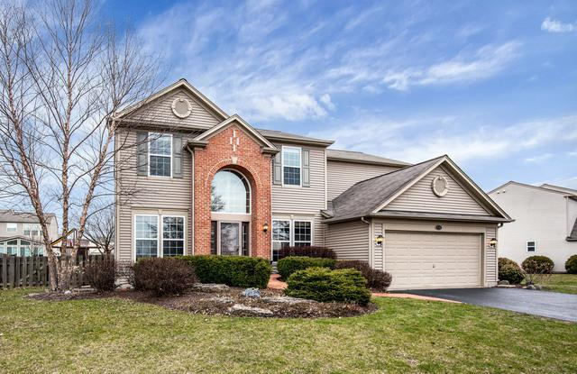 210 S Cranberry Street, Bolingbrook, IL 60490 (MLS #09903752) :: The Wexler Group at Keller Williams Preferred Realty