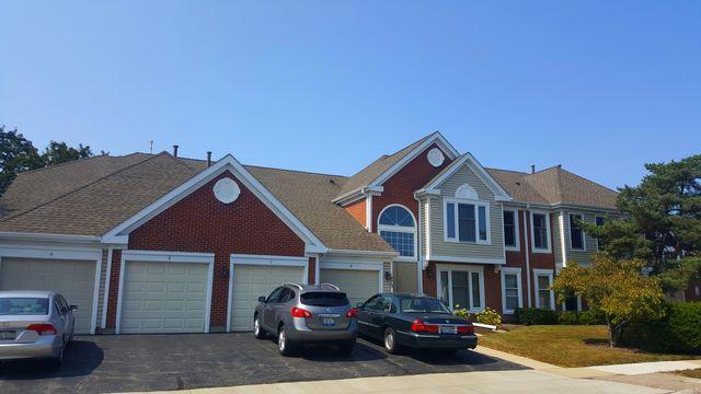 1870 Fox Run Drive D, Elk Grove Village, IL 60007 (MLS #09903940) :: Touchstone Group