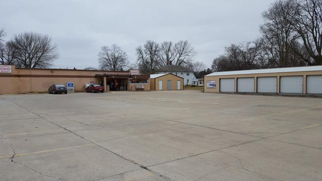 103 West Street, HOMER, IL 61849 (MLS #09905484) :: Littlefield Group