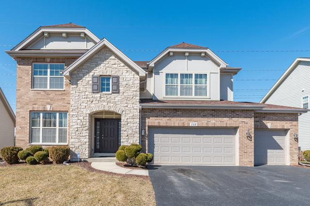 740 N Sleepy Hollow Lane, Romeoville, IL 60446 (MLS #09906427) :: Baz Realty Network | Keller Williams Preferred Realty