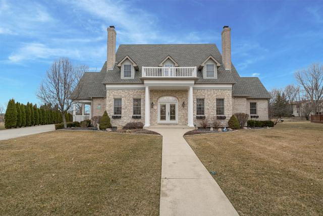 12658 Lake View Drive, Orland Park, IL 60467 (MLS #09908713) :: The Jacobs Group