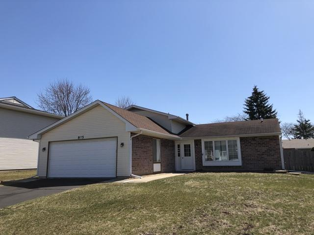 875 Hunter Drive, Roselle, IL 60172 (MLS #09908787) :: The Jacobs Group