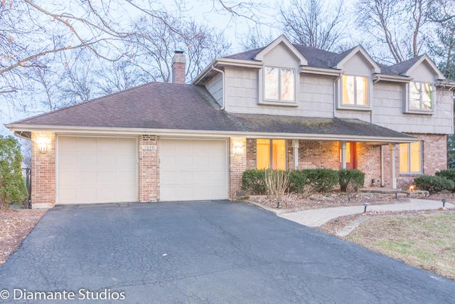 1040 Royal Bombay Court, Naperville, IL 60563 (MLS #09908849) :: The Jacobs Group