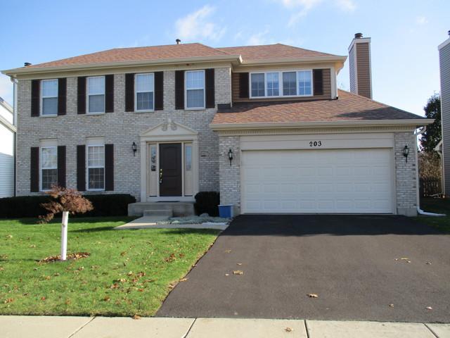 203 Cambridge Drive, Grayslake, IL 60030 (MLS #09909030) :: The Jacobs Group