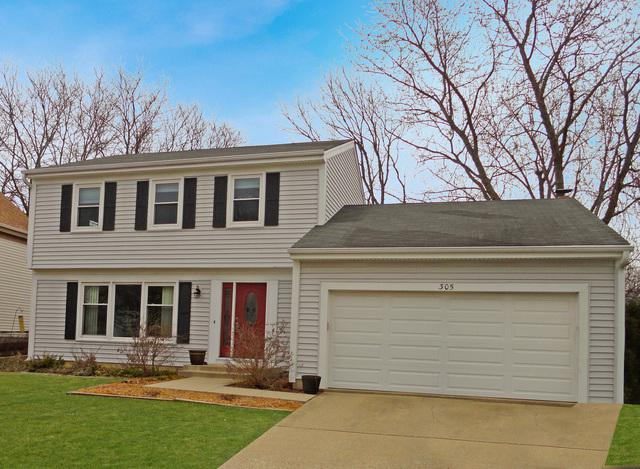 305 Amherst Court, Vernon Hills, IL 60061 (MLS #09909794) :: The Jacobs Group