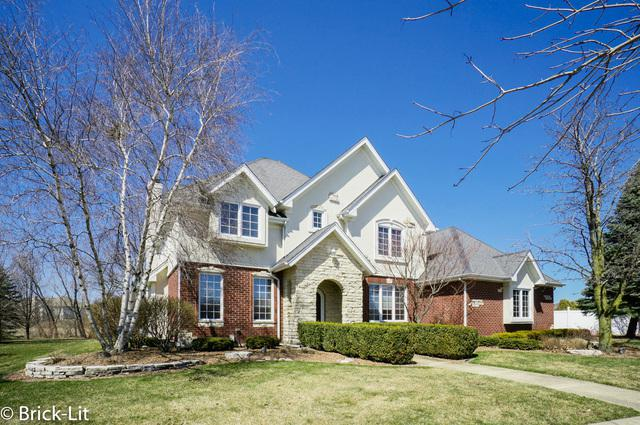 10530 Emerald Avenue, Orland Park, IL 60467 (MLS #09910296) :: The Jacobs Group