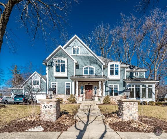 1013 Elizabeth Avenue, Naperville, IL 60540 (MLS #09910503) :: The Jacobs Group