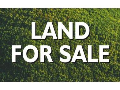 Lot 1 Wolfer Industrial Park, Spring Valley, IL 61362 (MLS #09911391) :: Lewke Partners