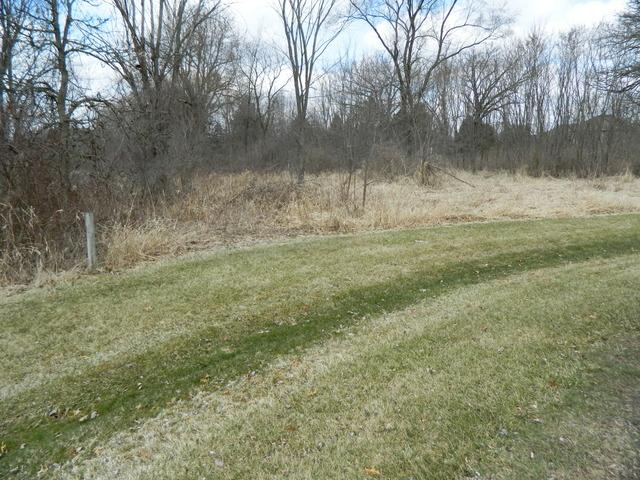 LOT 87 Pars Path Road, Elgin, IL 60123 (MLS #09912478) :: The Jacobs Group