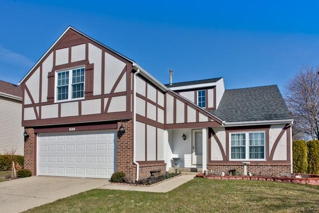 336 Albert Drive, Vernon Hills, IL 60061 (MLS #09913491) :: The Jacobs Group