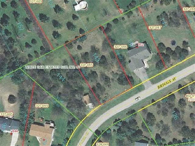 Lot 143 Briggs Avenue, Dixon, IL 61021 (MLS #09913921) :: The Dena Furlow Team - Keller Williams Realty