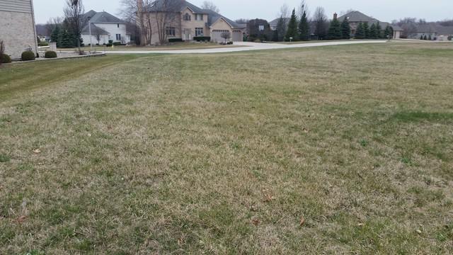 16035 Ridgewood Drive, Homer Glen, IL 60491 (MLS #09916311) :: Baz Realty Network   Keller Williams Preferred Realty