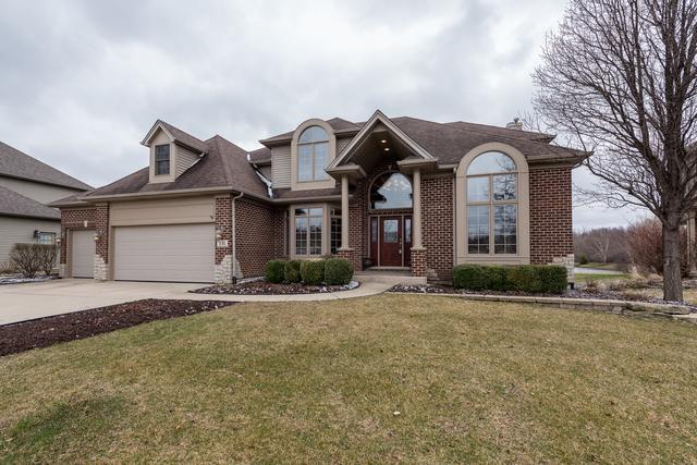 131 Pineridge Drive S, Oswego, IL 60543 (MLS #09917308) :: The Jacobs Group