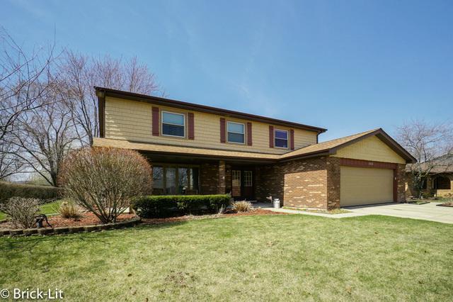 1513 Delmar Drive, New Lenox, IL 60451 (MLS #09917709) :: The Wexler Group at Keller Williams Preferred Realty