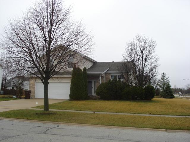 1025 Patriot Drive, New Lenox, IL 60451 (MLS #09917756) :: Lewke Partners