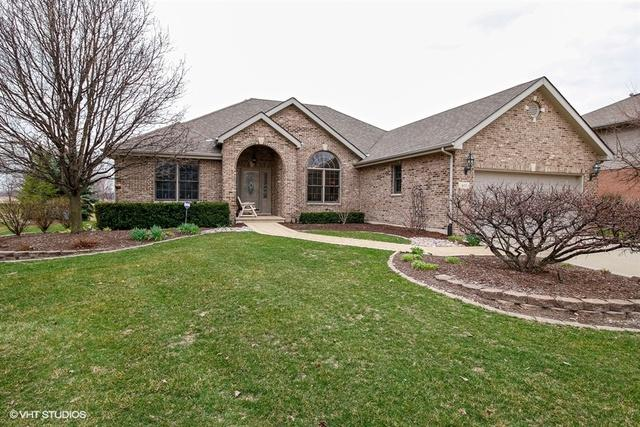 405 Monterey Drive, New Lenox, IL 60451 (MLS #09917788) :: The Dena Furlow Team - Keller Williams Realty