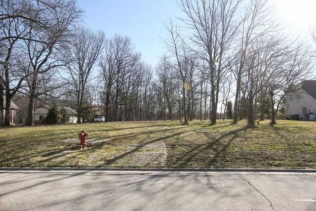 10S265 Vine Street, Burr Ridge, IL 60521 (MLS #09918421) :: The Wexler Group at Keller Williams Preferred Realty