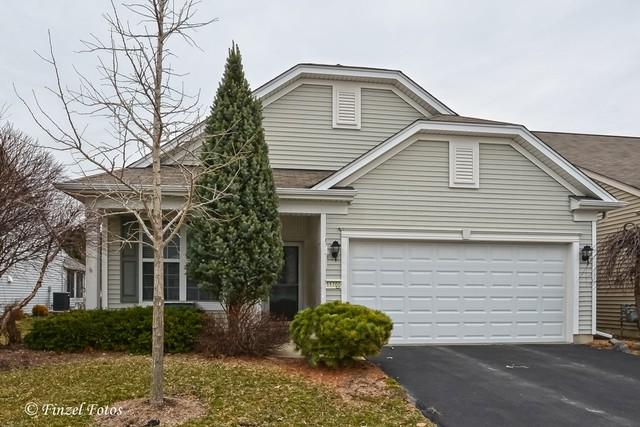 11700 Wembley Drive, Huntley, IL 60142 (MLS #09919261) :: The Jacobs Group