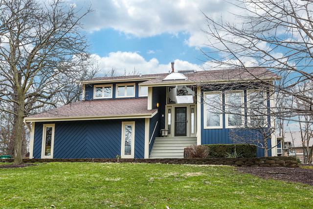16244 Bluff Road, Lemont, IL 60439 (MLS #09920401) :: Baz Realty Network | Keller Williams Preferred Realty