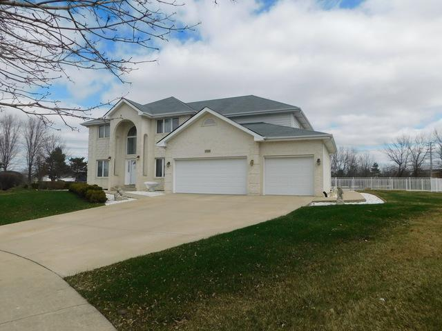 22306 Jeanette Court, Frankfort, IL 60423 (MLS #09921076) :: Baz Realty Network | Keller Williams Preferred Realty