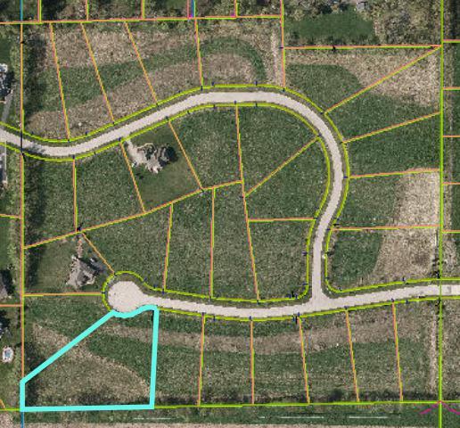 3043 Briar Drive, Spring Grove, IL 60081 (MLS #09921381) :: Lewke Partners