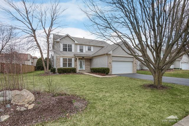259 Morgan Valley Drive, Oswego, IL 60543 (MLS #09921605) :: The Dena Furlow Team - Keller Williams Realty