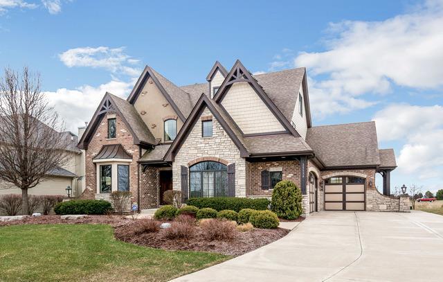 25538 Prairiewood Lane, Shorewood, IL 60404 (MLS #09921634) :: The Wexler Group at Keller Williams Preferred Realty