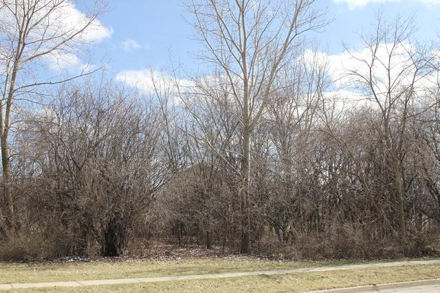 116 S Pershing Avenue, Mundelein, IL 60060 (MLS #09921761) :: Helen Oliveri Real Estate