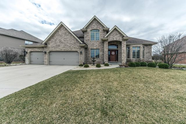 644 Stacey Drive, New Lenox, IL 60451 (MLS #09922091) :: The Wexler Group at Keller Williams Preferred Realty