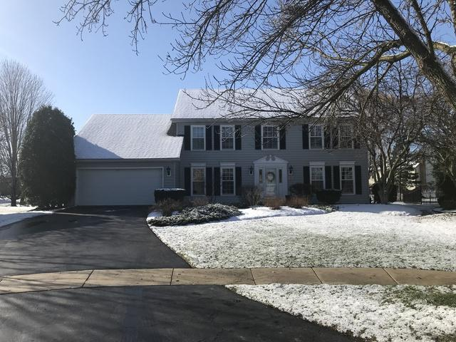 750 Meridian Court, Wheaton, IL 60189 (MLS #09922664) :: The Wexler Group at Keller Williams Preferred Realty