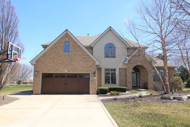 2962 Horizon Trail, New Lenox, IL 60451 (MLS #09922822) :: The Wexler Group at Keller Williams Preferred Realty