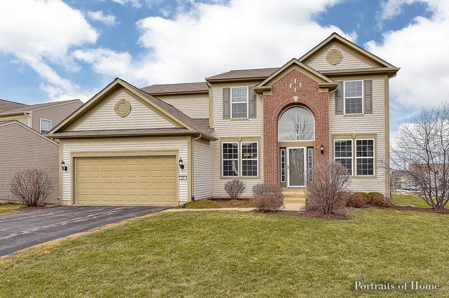 251 Foster Drive, Oswego, IL 60543 (MLS #09922894) :: The Dena Furlow Team - Keller Williams Realty