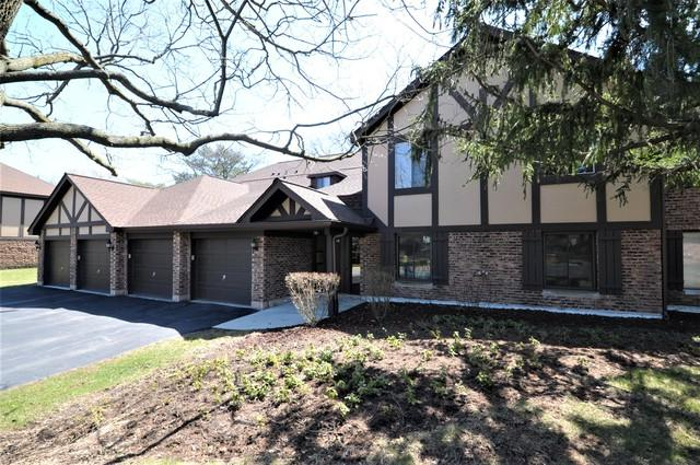 850 Sheldon Court D, Wheaton, IL 60189 (MLS #09923151) :: The Wexler Group at Keller Williams Preferred Realty