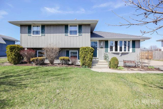 3721 Terrance Ferry Drive, Joliet, IL 60431 (MLS #09923243) :: Angie Faron with RE/MAX Ultimate Professionals