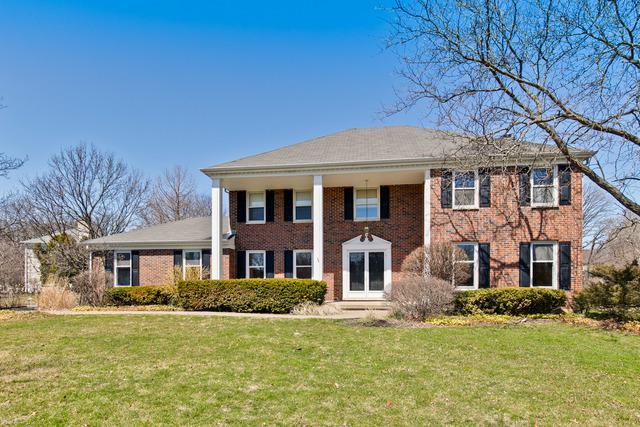 113 Fallstone Drive, Lincolnshire, IL 60045 (MLS #09923529) :: Helen Oliveri Real Estate