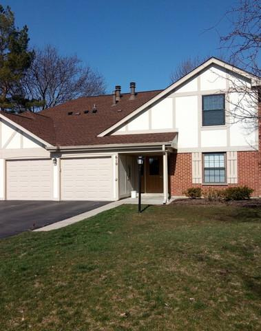 610 Ironwood Court A1, Wheeling, IL 60090 (MLS #09923614) :: Helen Oliveri Real Estate