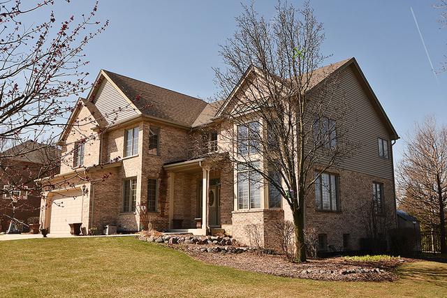 14040 Selva Lane, Orland Park, IL 60462 (MLS #09923750) :: Lewke Partners