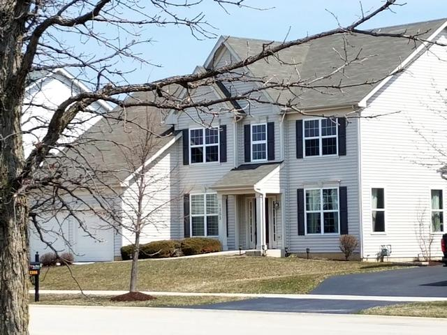 1302 Riverview Lane, Bolingbrook, IL 60490 (MLS #09923945) :: The Dena Furlow Team - Keller Williams Realty