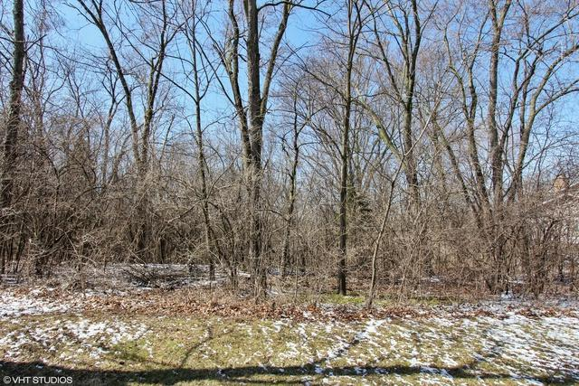 26959 W Lakeview Drive S, Lake Barrington, IL 60084 (MLS #09924045) :: Helen Oliveri Real Estate