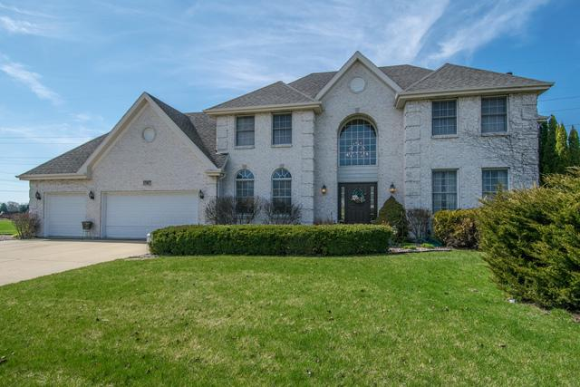 17417 S Honora Drive, Plainfield, IL 60586 (MLS #09924113) :: The Wexler Group at Keller Williams Preferred Realty