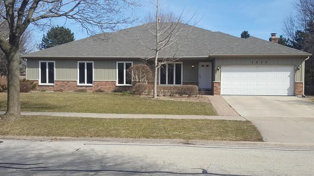 2228 Mecan Drive, Naperville, IL 60564 (MLS #09924240) :: The Wexler Group at Keller Williams Preferred Realty