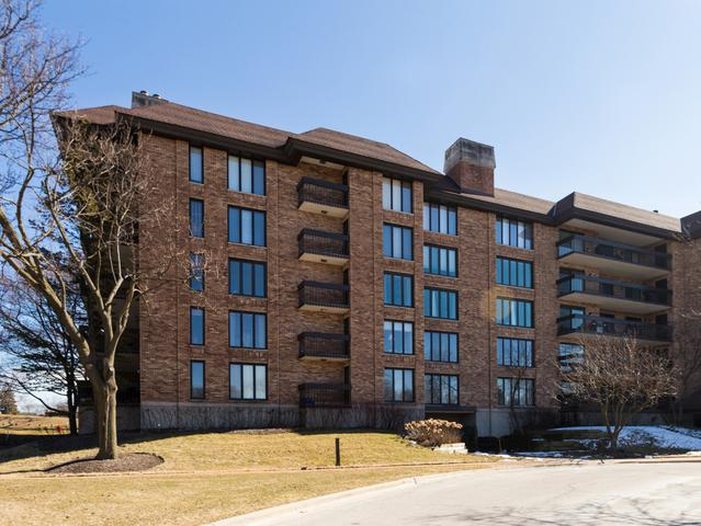 3801 Mission Hills Road #310, Northbrook, IL 60062 (MLS #09924317) :: Helen Oliveri Real Estate