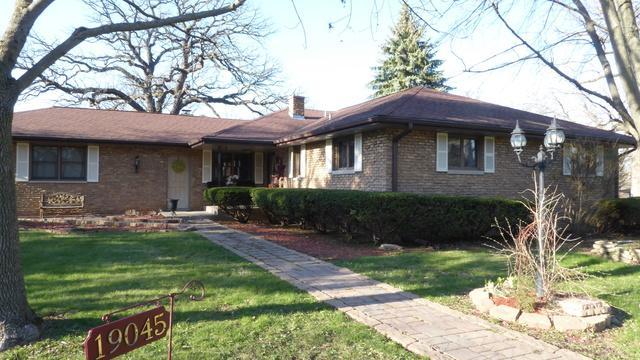 19045 S Richard Avenue, Mokena, IL 60448 (MLS #09924321) :: The Wexler Group at Keller Williams Preferred Realty