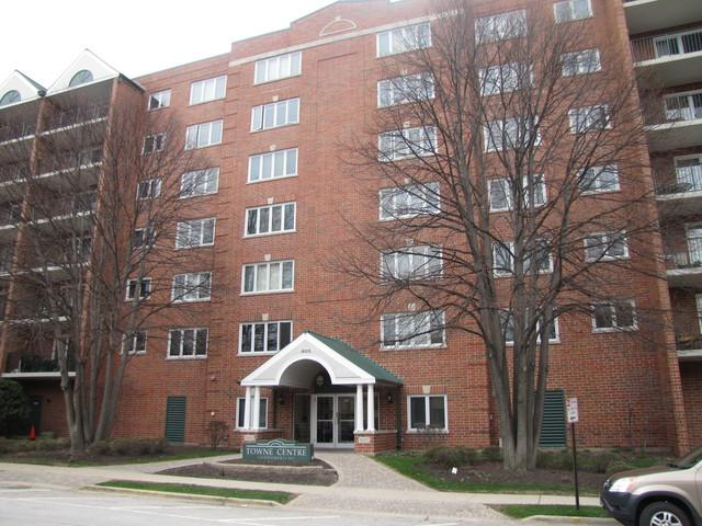 1600 E Thacker Street #612, Des Plaines, IL 60016 (MLS #09924406) :: Helen Oliveri Real Estate