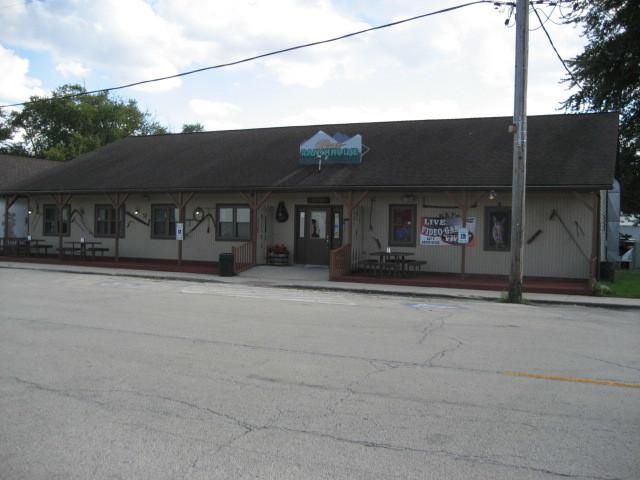 208 Main Street, Essex, IL 60935 (MLS #09924439) :: The Dena Furlow Team - Keller Williams Realty