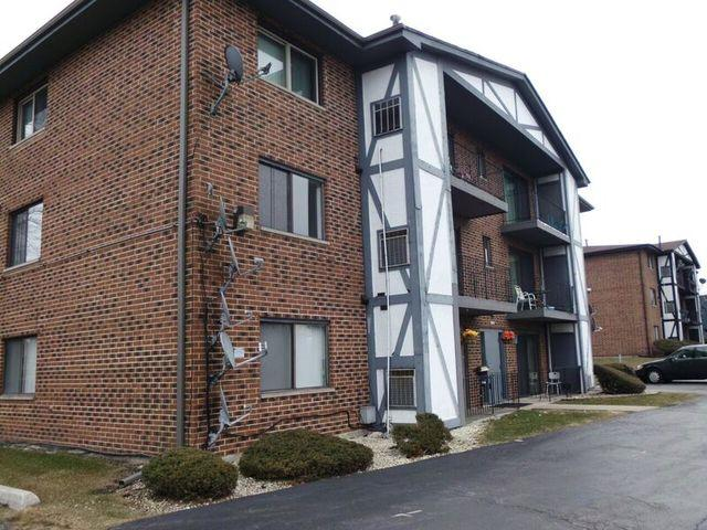 16610 Theresa Lane #204, Tinley Park, IL 60477 (MLS #09924459) :: The Wexler Group at Keller Williams Preferred Realty