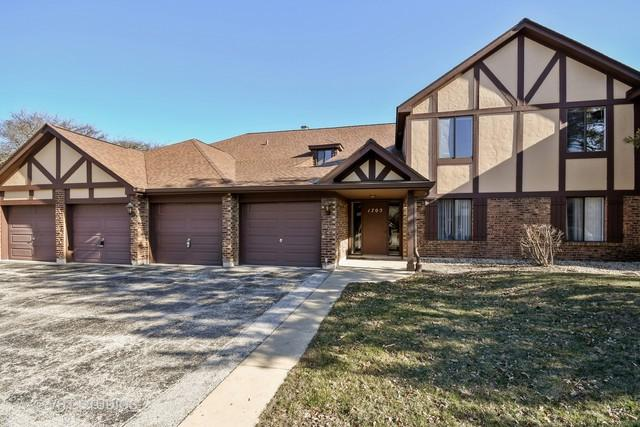 1705 Lakecliffe Drive C, Wheaton, IL 60189 (MLS #09924491) :: The Wexler Group at Keller Williams Preferred Realty