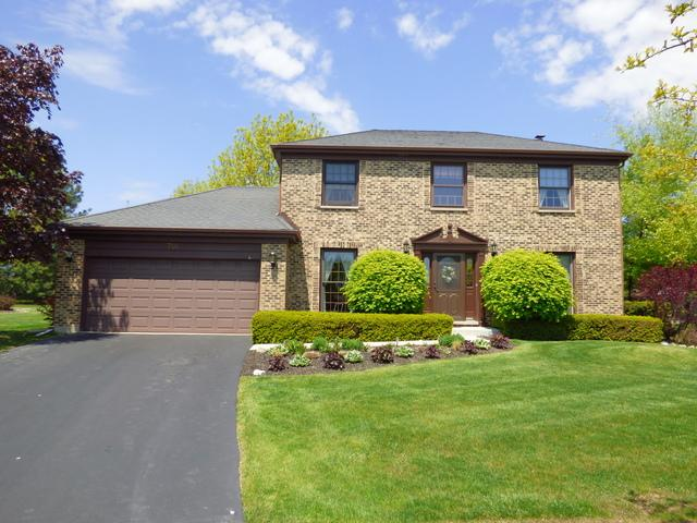 746 W Carriageway Court, Palatine, IL 60067 (MLS #09924527) :: Helen Oliveri Real Estate