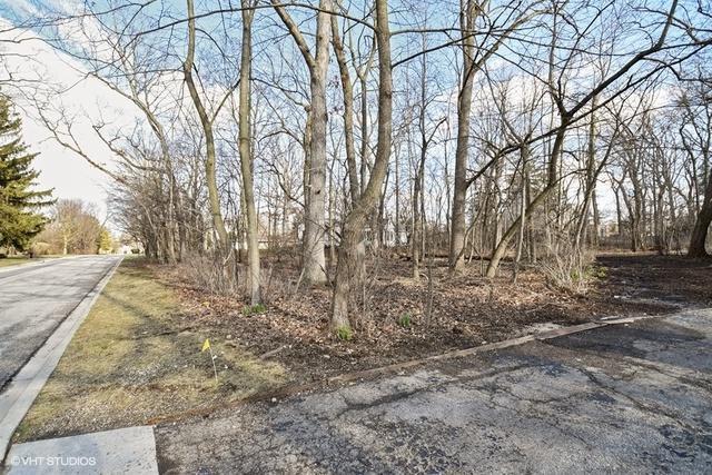 Lot 20 York Lane, Highland Park, IL 60035 (MLS #09924665) :: Ani Real Estate